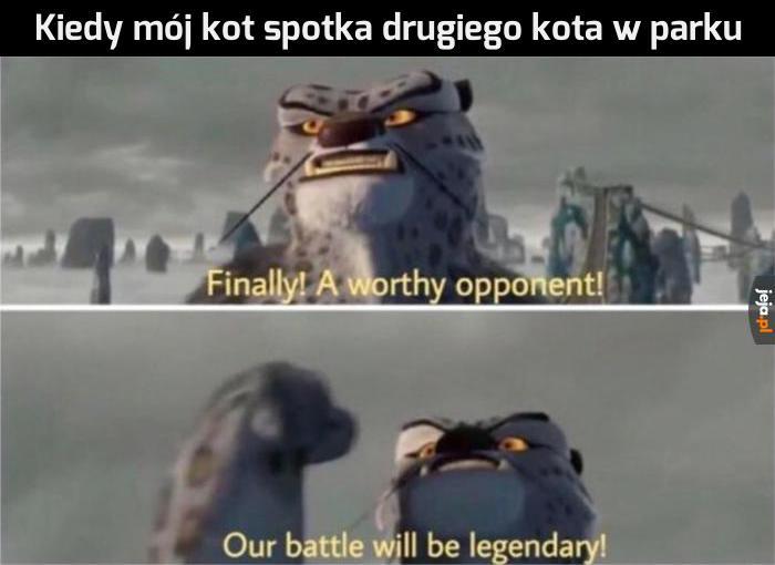Niech wygra lepszy!