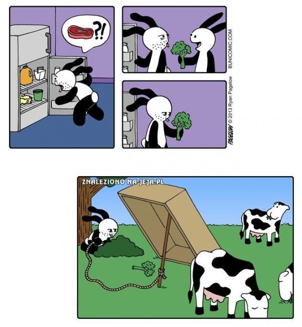 Mięsny problem