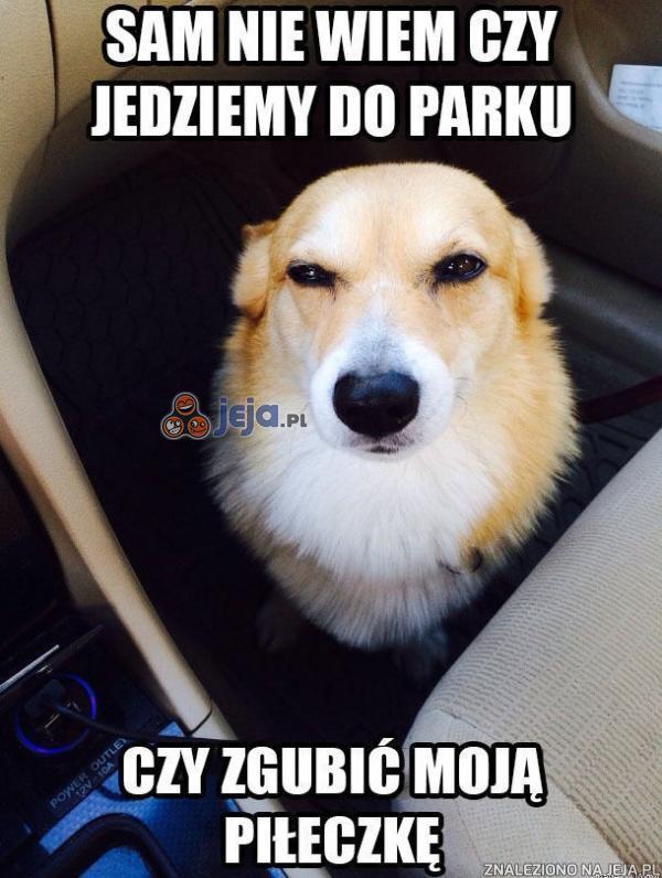 Sam nie wiem czy jedziemy do parku