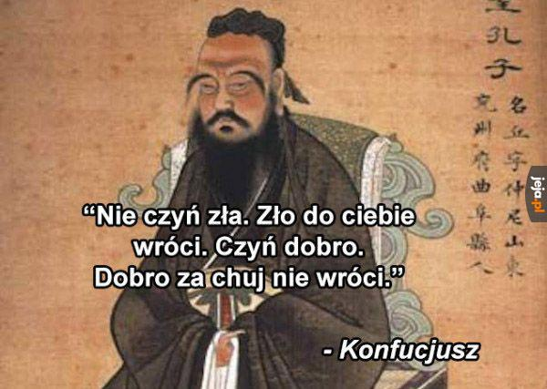 Mądry gość