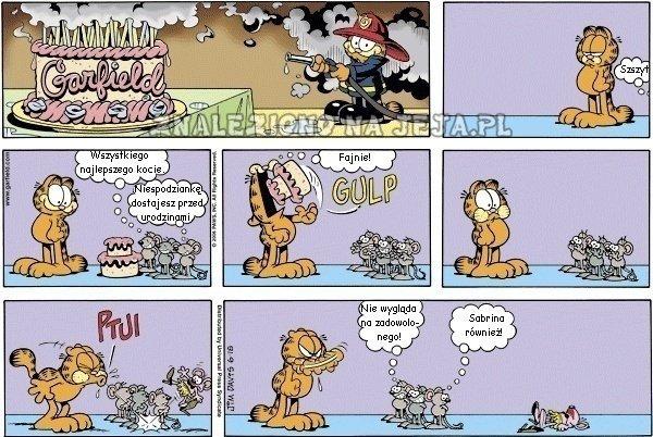 Urodziny Garfielda