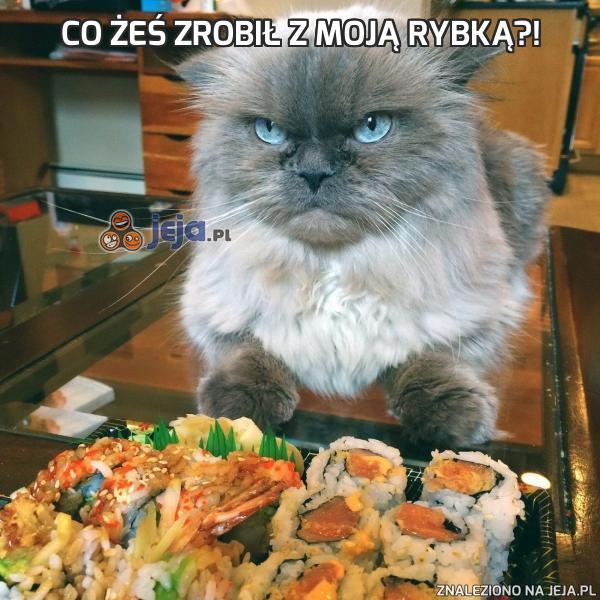 Co żeś zrobił z moją rybką?!