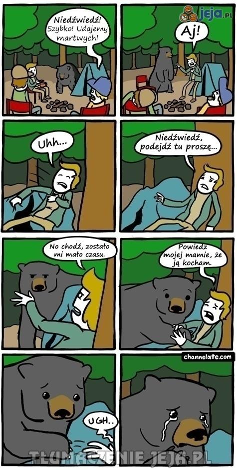 Udawanie martwych przy niedźwiedziu