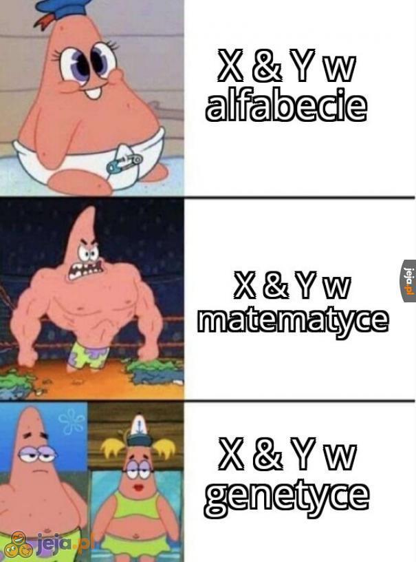 X & Y X & Y nierówny