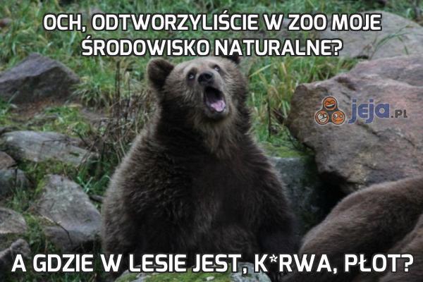 Och, odtworzyliście w zoo moje środowisko naturalne?