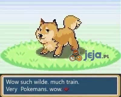 Pokemon bardziej znienawidzony od Bidoofa