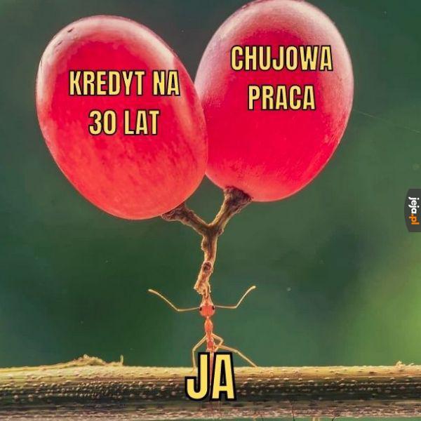 Idealny balans