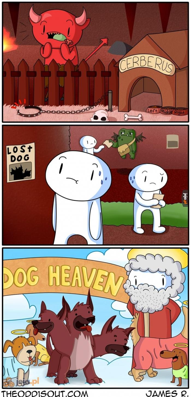 Kiedy jesteś zbyt dobrym psem