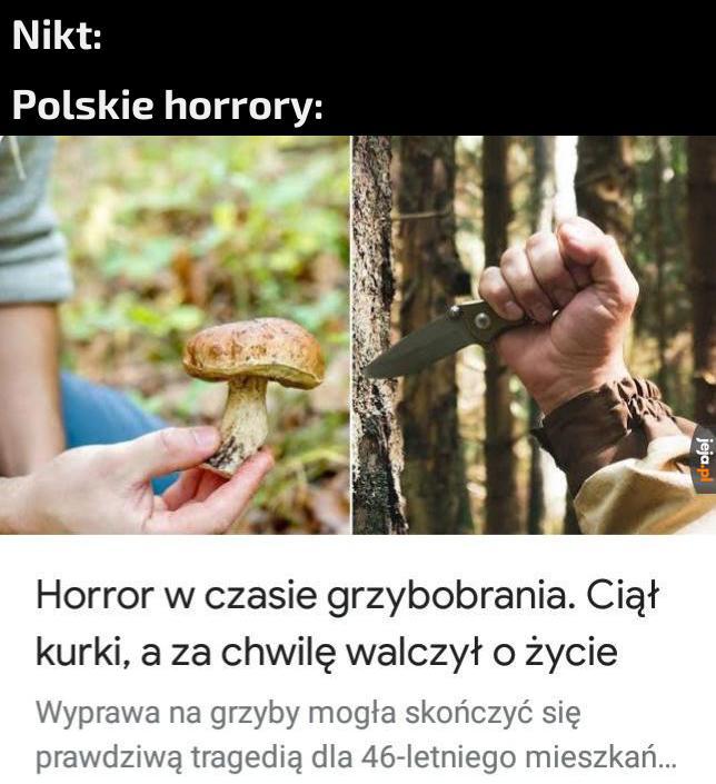 Tytuł zbiera grzyby