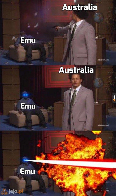 W tej wojnie zwycięzca mógł być tylko jeden