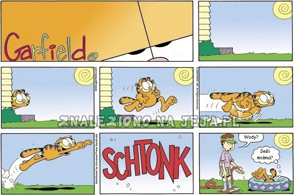 Garfield: Skok do basenu