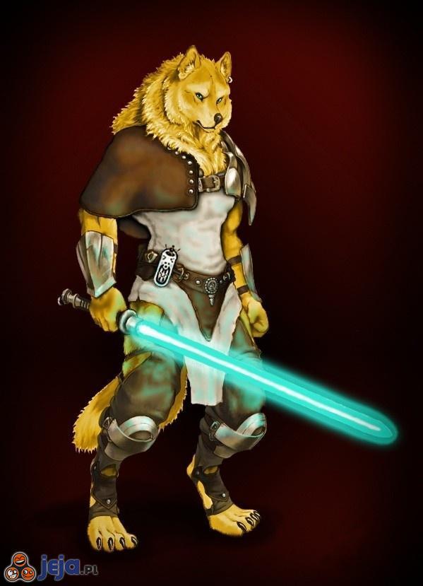 Tak bardzo Jedi, Moc taka wow!