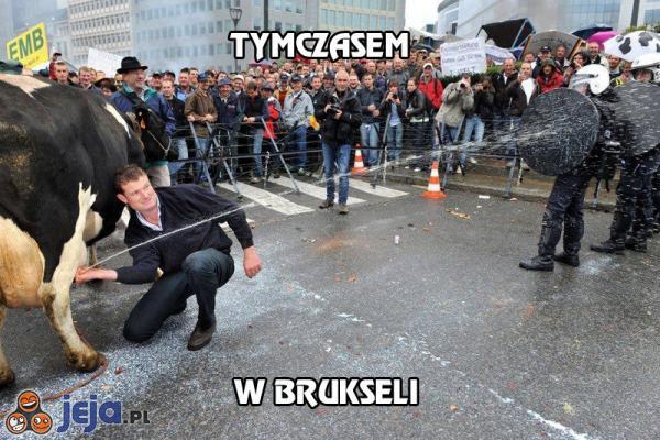 Tymczasem w Brukseli
