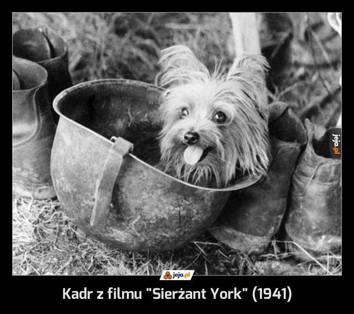 "Kadr z filmu ""Sierżant York"" (1941)"