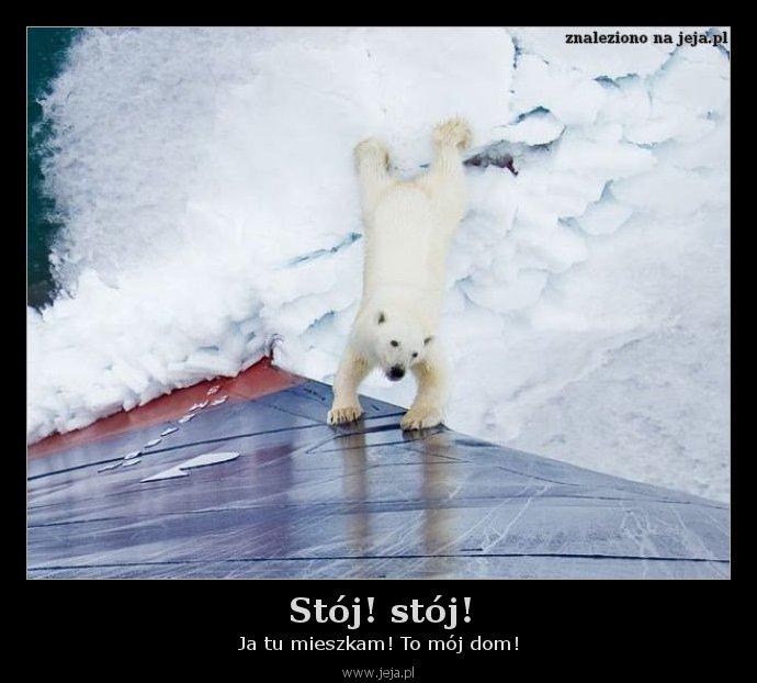 Stój! stój!