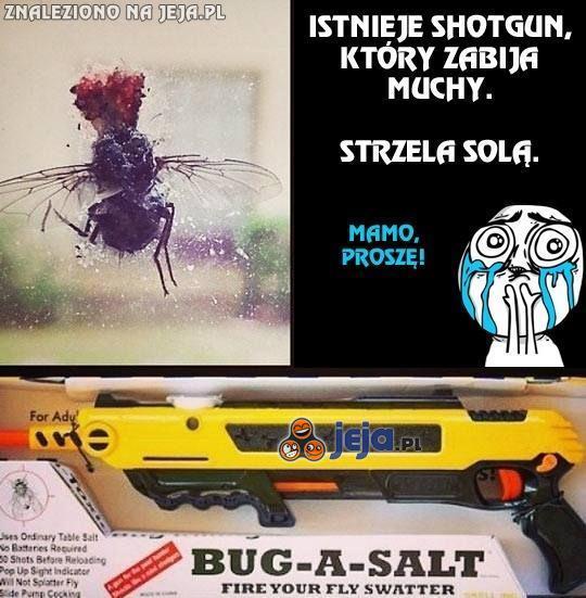 Nowy sposób do walki z muchami