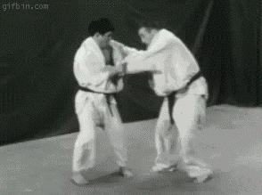 Judo - poziom umiarkowanie trudny