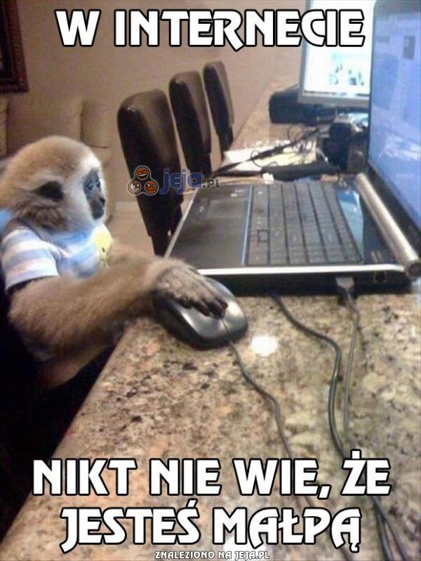 W internecie nikt nie wie, że jesteś małpą