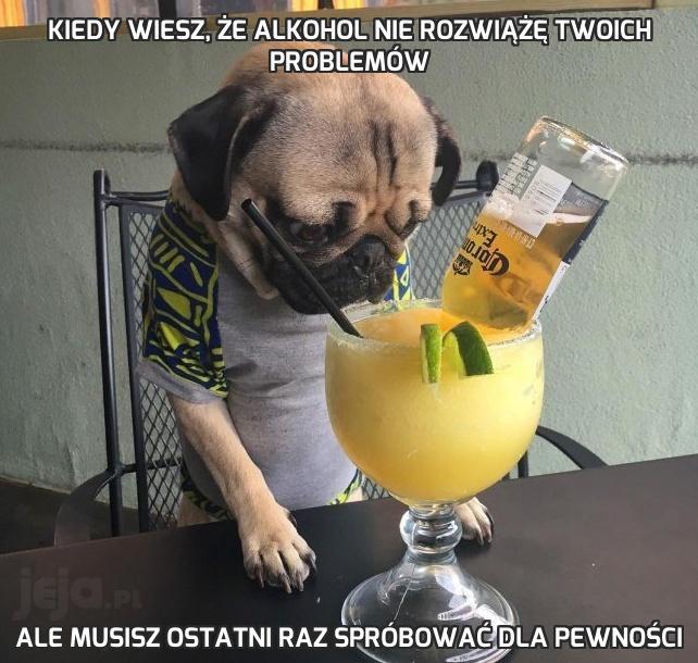 Kiedy wiesz, że alkohol nie rozwiążę Twoich problemów
