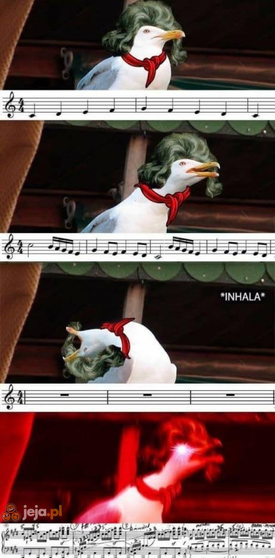 Hardkorowa symfonia