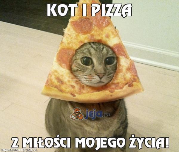 Kot i pizza