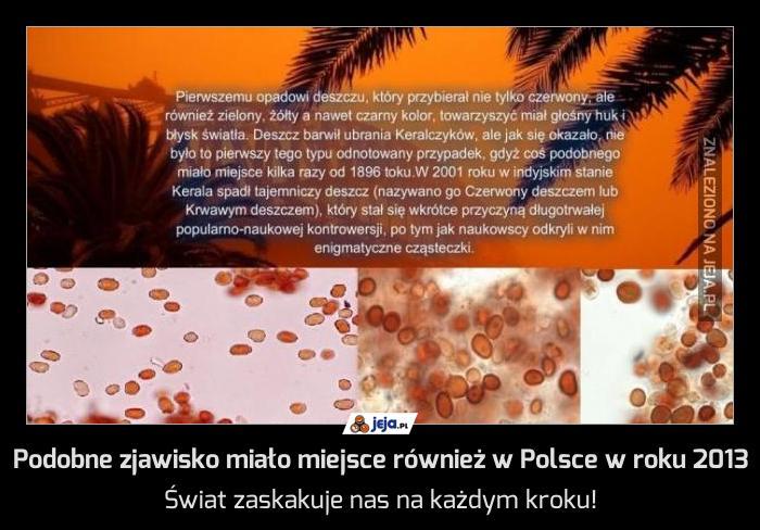 Podobne zjawisko miało miejsce również w Polsce w roku 2013