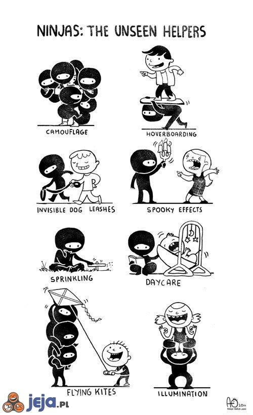 Ninja: Niewidzialni pomocnicy