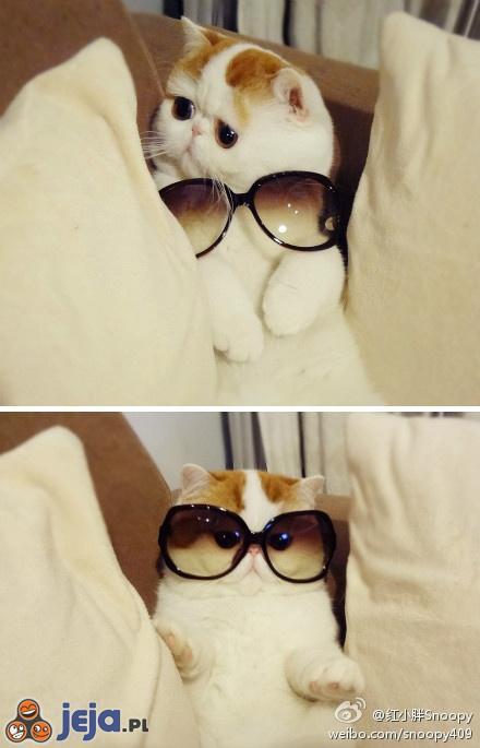 Czy do twarzy mi w okularach?