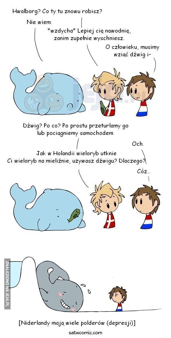 Wieloryby na mieliźnie