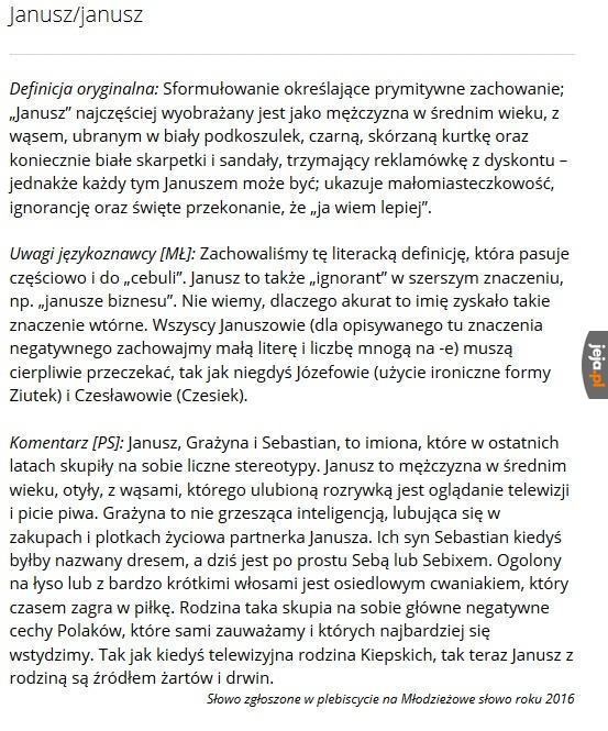 """Oficjalna definicja """"Janusza"""""""