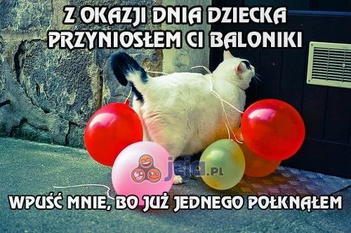 Baloniki od kota