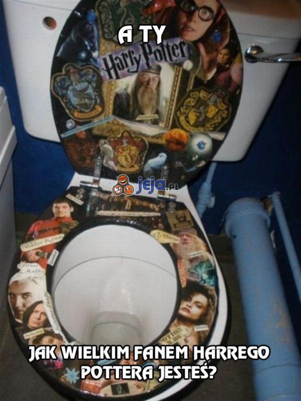 A Ty, jak wielkim fanem Harrego Pottera jesteś?