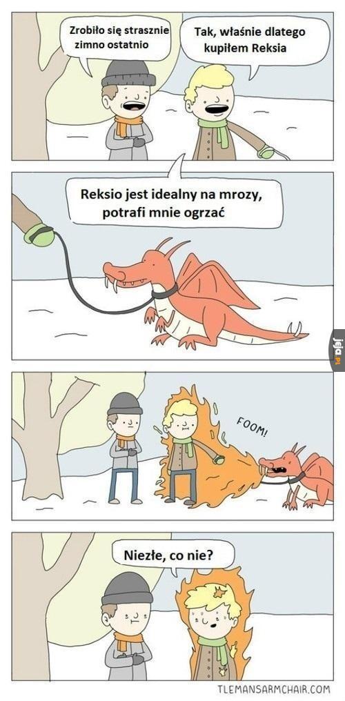 Reksio - idealny grzejnik