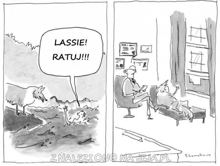 Lassie ratuj!