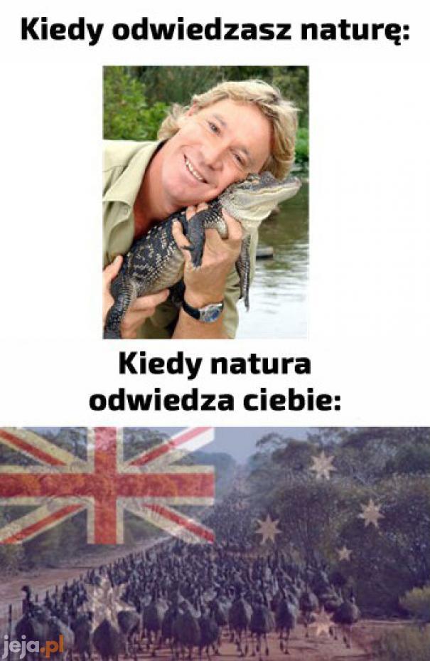 Problemy Australijczyków