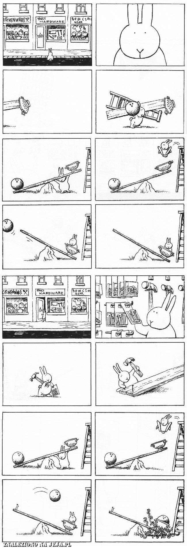 Samobójstwa zajączka: Zajączek i makaron