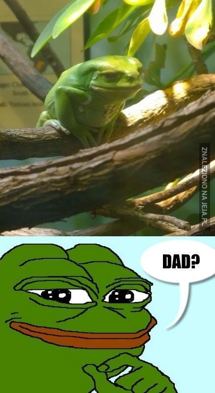 Pepe odnalazł ojca