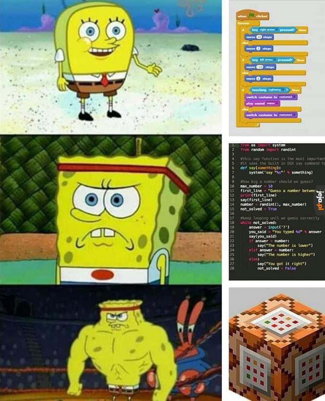 Programista ostateczny