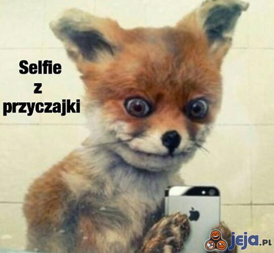 Selfie z przyczajki