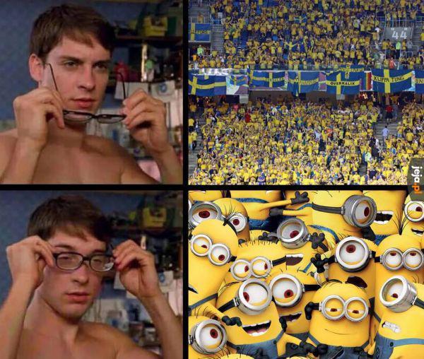 Szwedzcy kibice