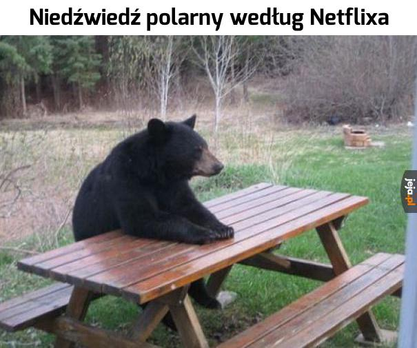 Netflix taki jest