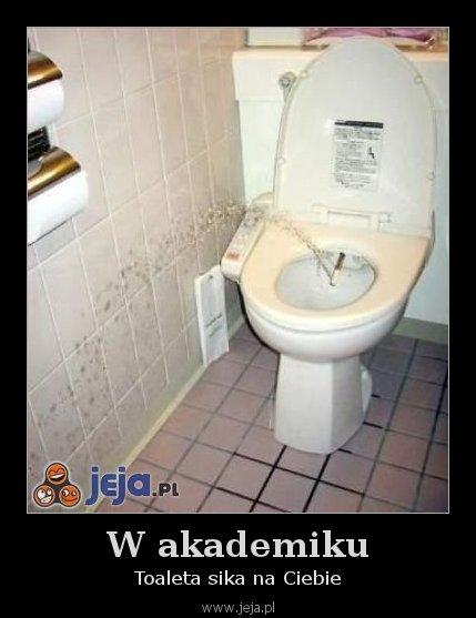 W akademiku