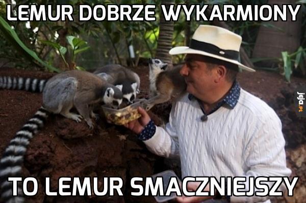 Makłowicz radzi