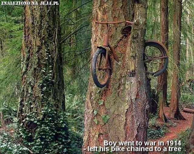 Zapomniany rower