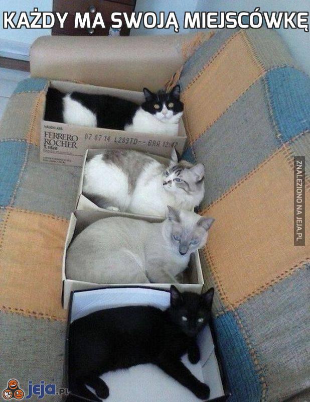 Każdy ma swoją miejscówkę