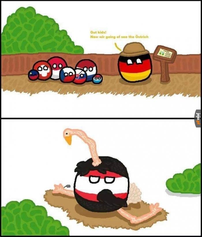 Austruś