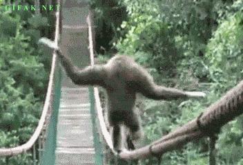 Małpi sposób