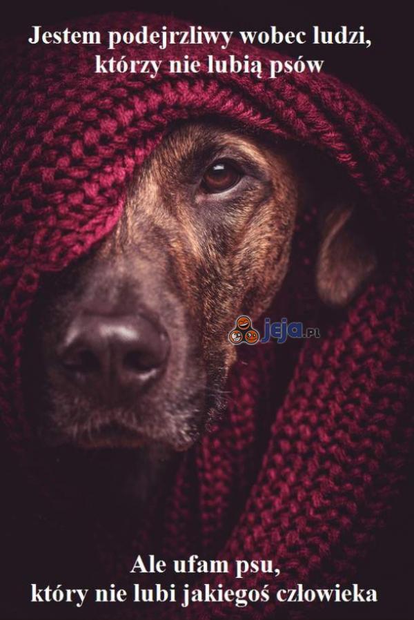 Jestem podejrzliwy wobec ludzi, którzy nie lubią psów