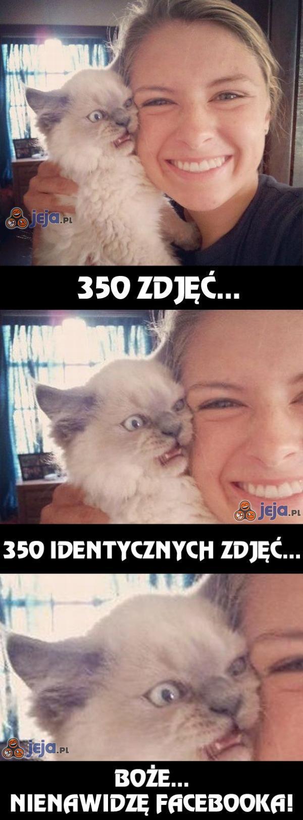 350 zdjęć...