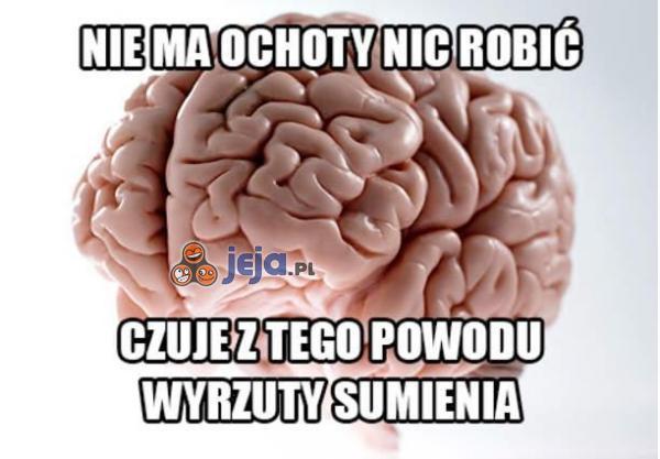 Głupi mózg